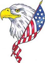 flying eagle with american flag