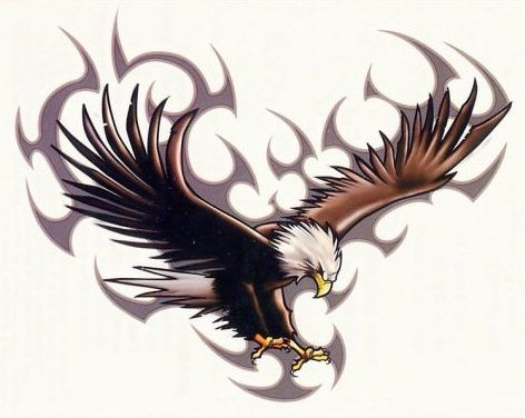 Meanings of Eagle Tattoos