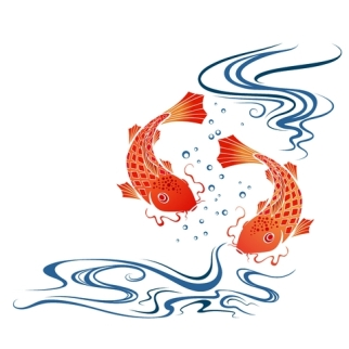 pair of red koi