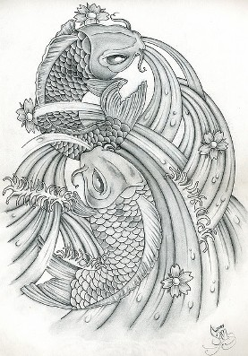black and white pair koi