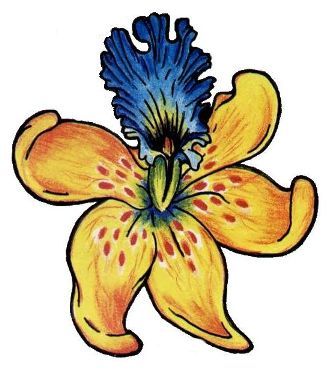 yellow orchid tattoo