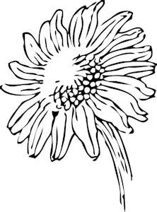 single color sunflower tattoo image